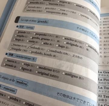 スペイン語お勉強中 レベル3!