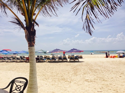 Mexico; 蒼い海沿いの小さな語学学校が最高だったわけ Best Language schoolen Playa de Carmen