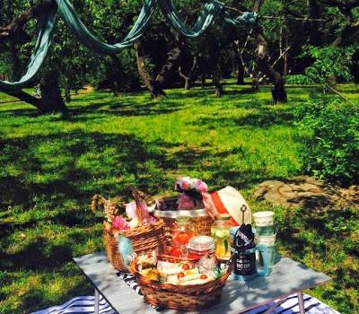 Morning Picnic〜デトックスウォーターで初夏を楽しむ!