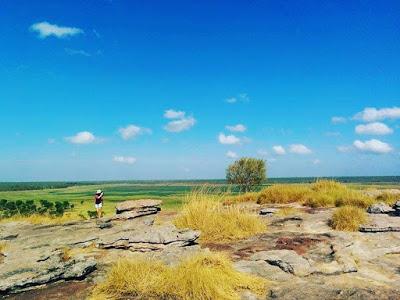 絶景!カカドゥ公園で大草原・湿原を望む
