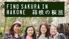 箱根・小田原へ日帰り桜旅♩ Cherry blossom with Japanese castle in Hakone
