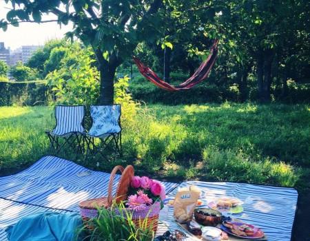 Summer picnic 簡単おしゃれなピンチョスで初夏ピクニック