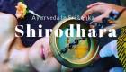 スリランカにて、アユールベーダホテルのドクターが神だった話 Ayurveda Doctor in SriLanka was just amazing!