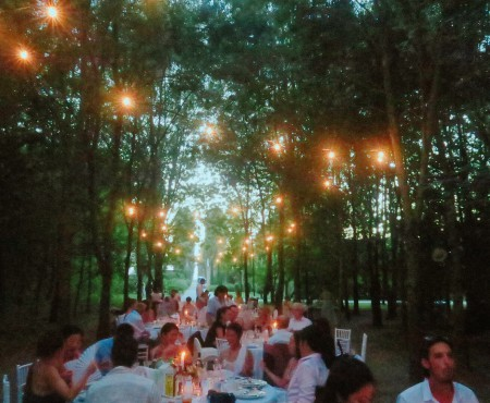 イタリアの森の中で、幻想的な結婚式 Dreamy wedding in Italy