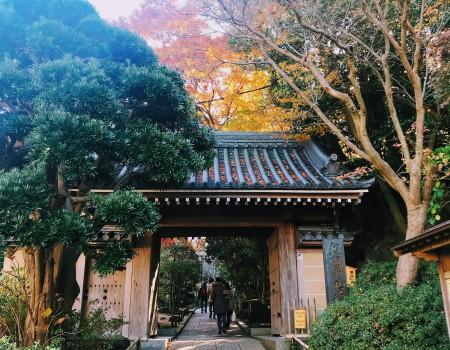 フルカラーな季節をアクティブに堪能できる鎌倉プラン