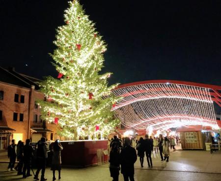 Merry Christmas! 寒くて暗い冬だから、イルミネーションがより煌めく