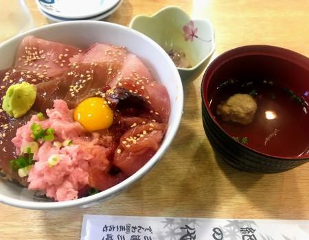 [みさきマグロきっぷ1]お魚まみれ! 美味しい鮪と水族館 DayTrip Plan:Tuna at Miura coast