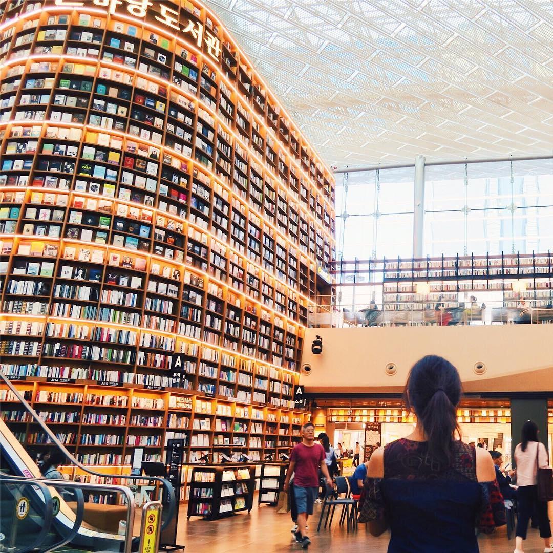 #読書の秋 こんなおしゃれな図書館がいきなりショッピングモールの中にあるカンナムやっぱイケてるな📖😎 ーーーーーーーー 📍Gangnam,Seoul,Korea Such a cool library.It suddenly shows up in the shopping mall. 📚 😎 ーーーーーーーー #library #seoul #gangnam #korea #light #backshot #amiback #travelgram #travelblogger #travelholic #tinyatlas #surprising #図書館 #読書 #ソウル #カンナム #カンナムスタイル #カンナムスタイルの銅像あった笑 #洒落てるぜ #カンナム駅 からは遠い #🚕 #渋滞 #秋 #日韓 #ソウルおすすめ #秋旅