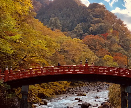 日帰りで、紅葉の日光へ!  Day Trip plan:Colored leafs in Nikko, Japan