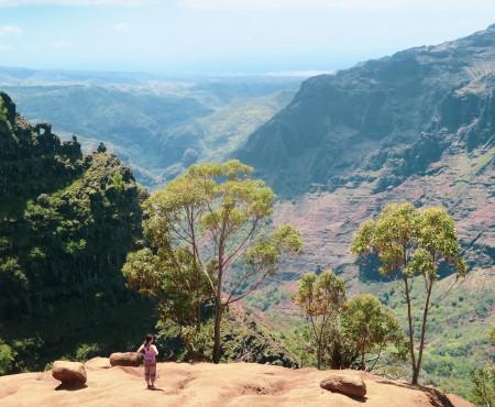 初のカウアイ島!ワイメアキャニオンでトレッキングして景色に圧倒される。First time in Kauai island- Waimea Canyon trekking