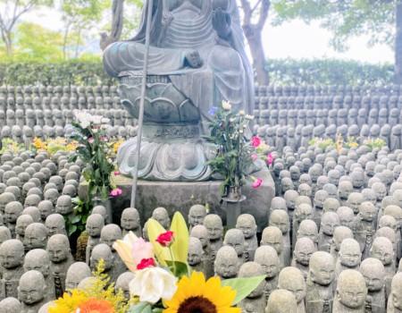 長谷寺へ🌻月命日の水子供養 Buddhist Ritual To Mourn stillbirth