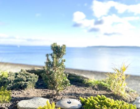 海の前の小さなお墓 Small grave for my baby