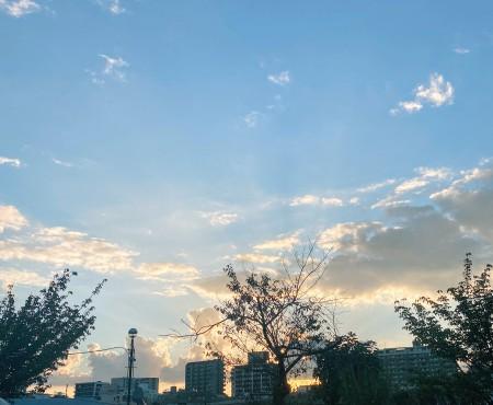 エゴと罪悪感と秋の空